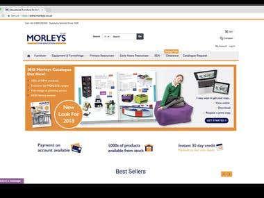 Magento 2 Homepage Development
