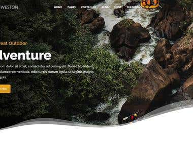 Website Design and Development ( Laravel)