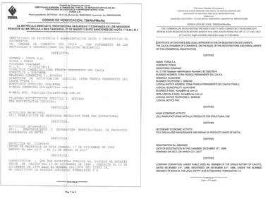Legal document- Spanish to English