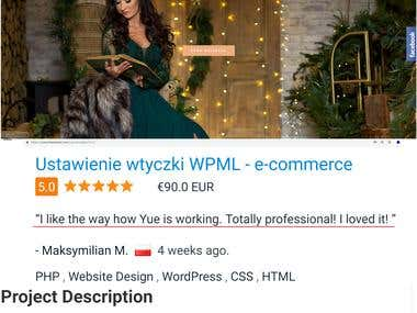 WPML and Multilingual Website Super Expert.