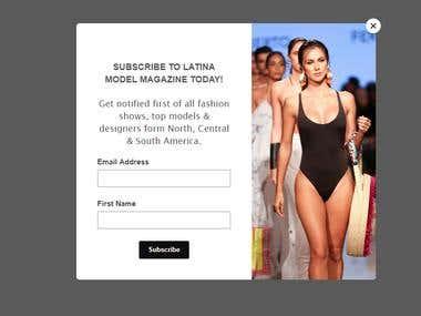 Creating mailchimp pop up at wordpress website