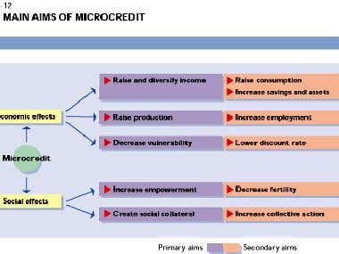 Evolve Micro-credit Management