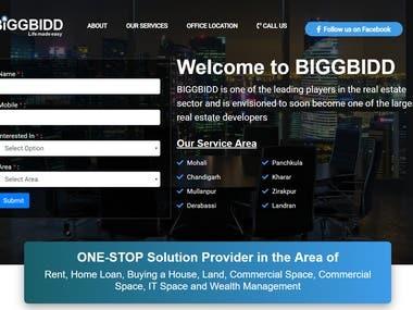 BIGGBIDD-Real-Estate-Consultants