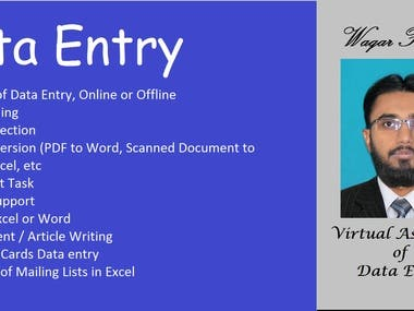 Virtual Assistant for Data Entry