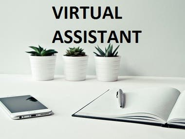 Martiniwebb Virtual Assistant Projects