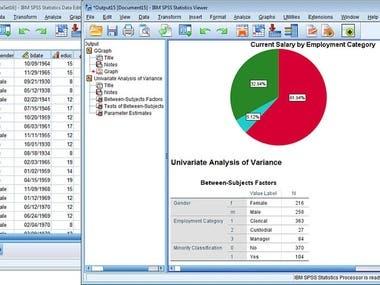 SPSS-statistics