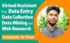Virtual Assistant /Data Entry