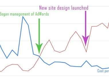 AdWords | Client Results