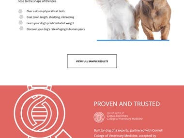 Landing Pages | CRO