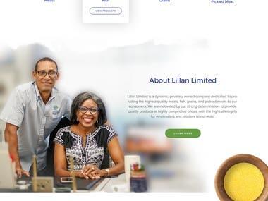 UI/UX Design/Frontend Design (Lillian Passion For Quality )
