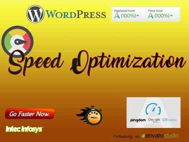 Speed optimization wordpress