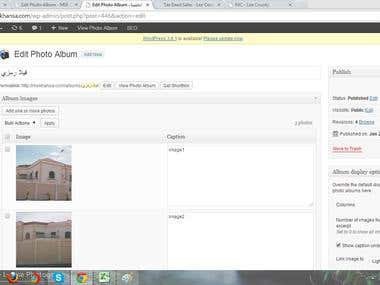 Created albums and uploaded images.