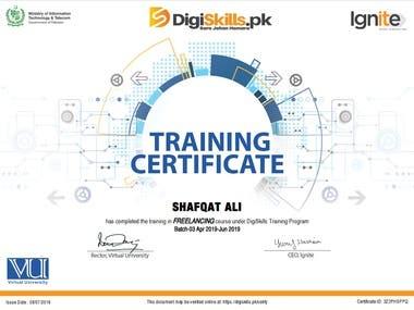 Freelancing Certificate