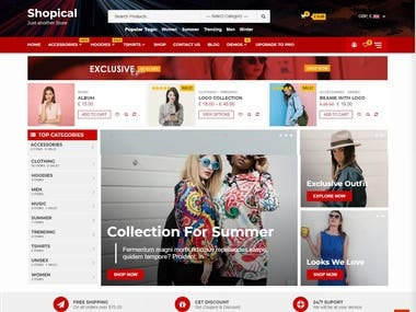 ecommerce wordpress website