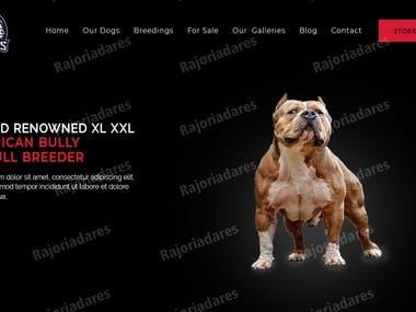 Graphic designer to design a website psd