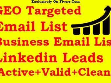 GEO And Niche Targeted Email List