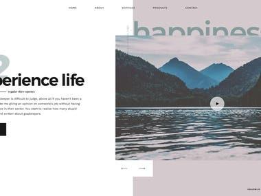 Web Design, Landing Page Design
