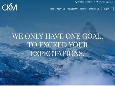 WordPress website for an Agency