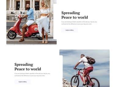 WordPress Template Ecommerce