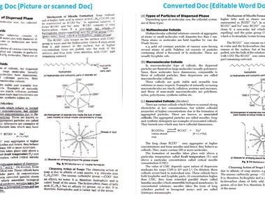 Format Document Conversion