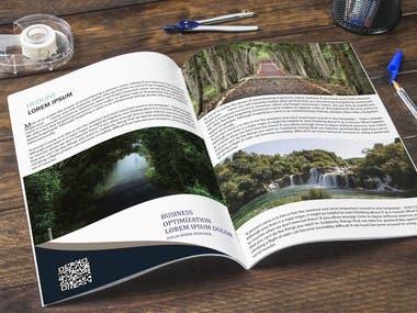 I will develop clean brochure design, booklet, magazine