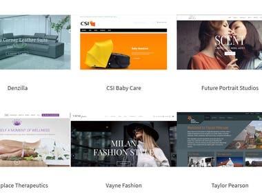 WordPress & eCommerce Site