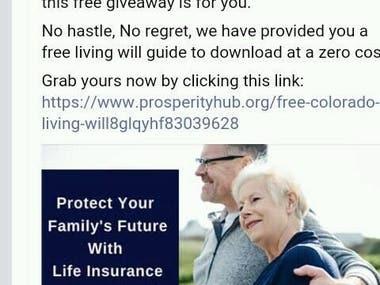Facebook creative lead ad