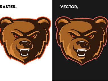 Raster to Vector Tracing