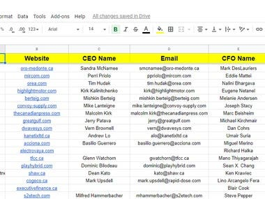 Specific Person's Email finding (Owner/MD/CEO/CFO/CIO/CTO