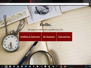 PHP/HTML - Bio Website