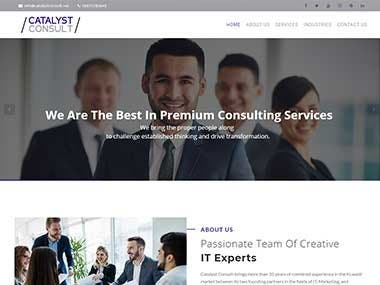 Website for a Consultant Company (catalystconsult.net)