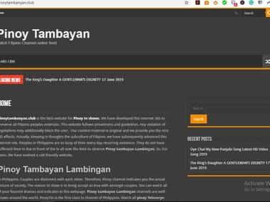 WordPress Article Writing Website