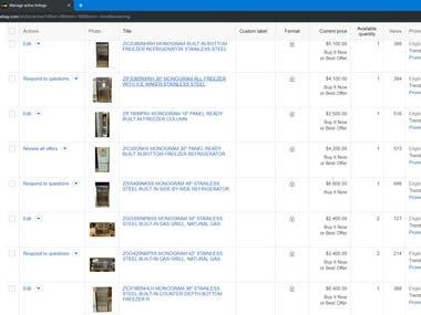 eBay Product Listing & Description