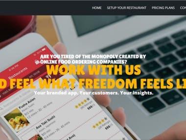 Web Design - Survey Company