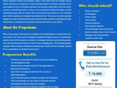 Business Analysis Mailer Design