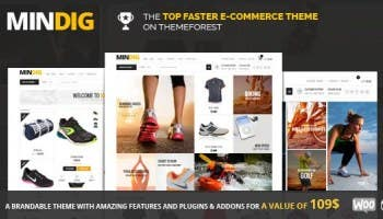 WordPress Blogging and E-commerce Website,Copy Typing,