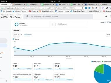 Google Analytics Avenues