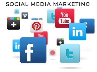 SMM (Social Media Marketing)