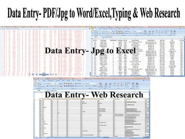 Data Entry (JPEG/PDF to Word & Excel)