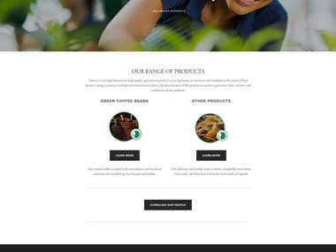 Squarespace Website (AgriNexus)