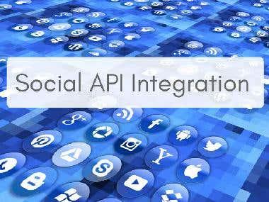 Social Network API Integration