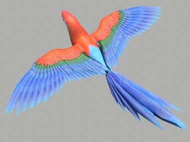 3D Animal Modeling