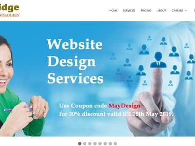 Software Consulting & Services