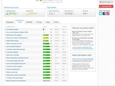 wordpress speed optimization premium service