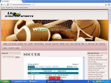 wordpress site design and SEO