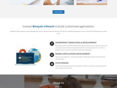 Binayakinfotech-wordpress-website