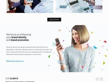 Wordpress Website Website