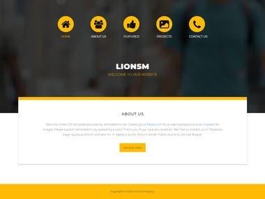 Lionsim company site
