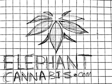 Sketch for ElephantCannabis.com