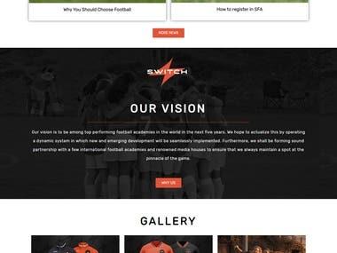 Developed Wordpress website